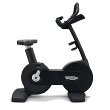 Rotoped TechnoGym Excite Bike Advanced LED