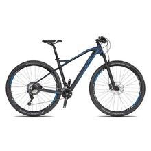 Horský bicykel 4EVER Inexxis 2 29'' - model 2019