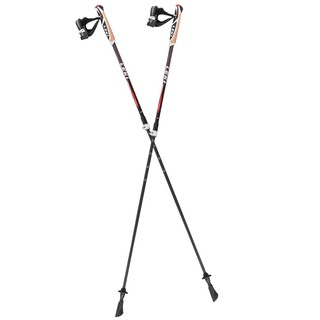 Nordic Walking palice Leki Instructor Lite 2018