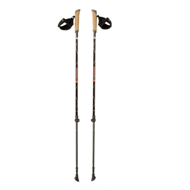 Nordic Walking palice FERRINO Wing