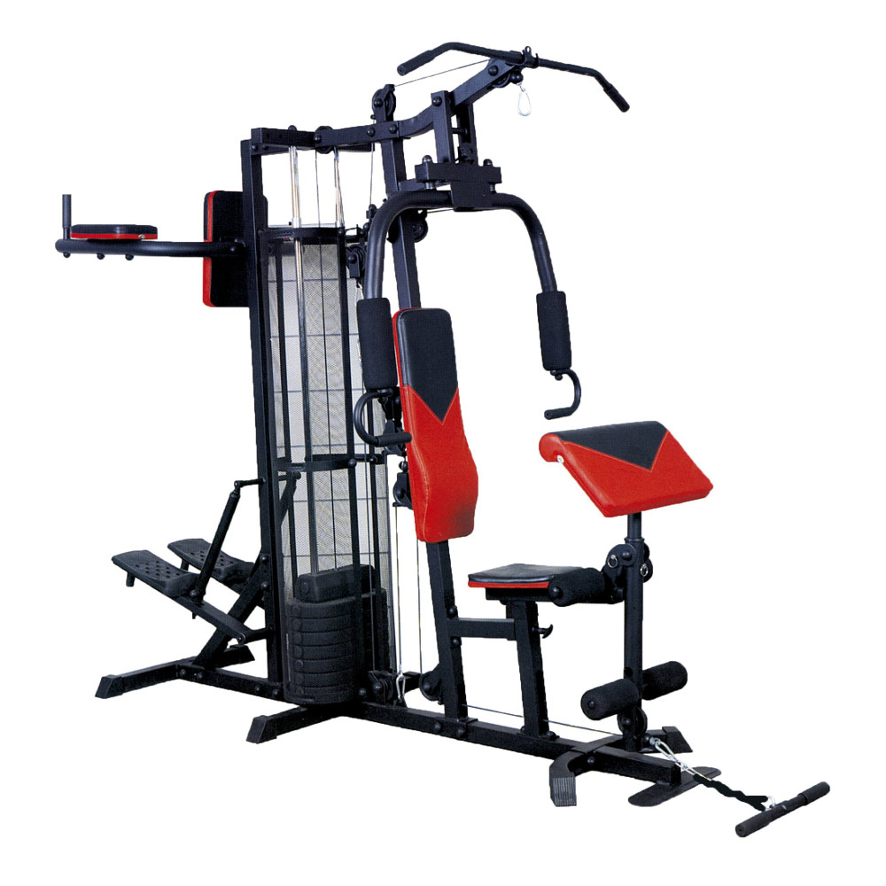 Posilňovacia veža Spartan Pro Gym II